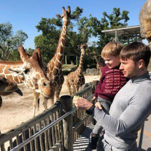 Сергей Лазарев и Никита в зоопарке смотрят жирафов