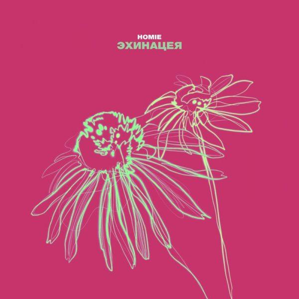 Обложка сингла Эхинацея