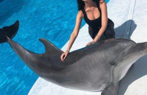 Маша Вебер рассказала, как к ней вынырнул дельфин