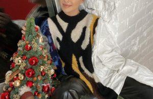 Елена Темникова записала новую теплую зимнюю песню «Моё любимое» | Музолента