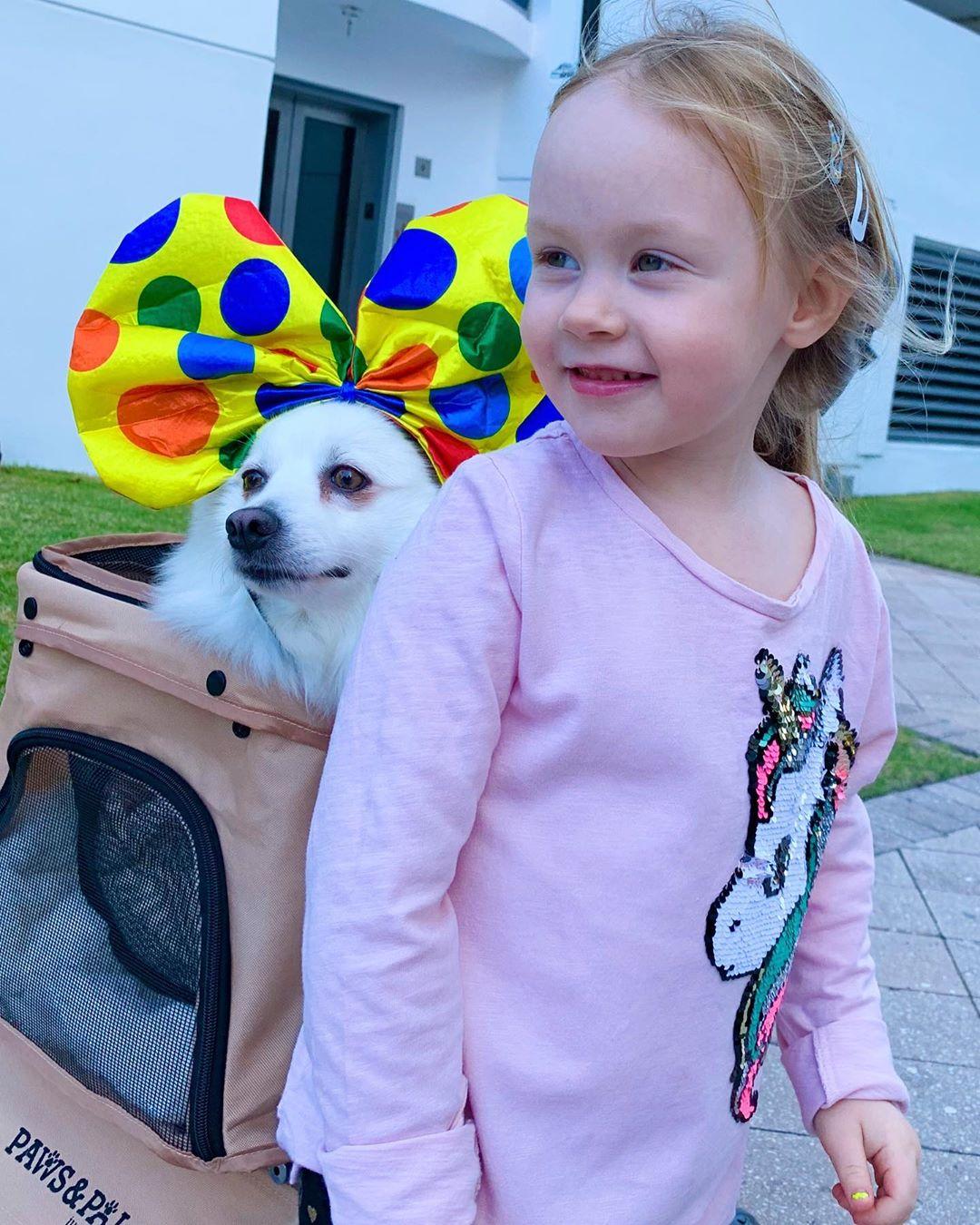 Дочка Игоря Николаева с собачкой