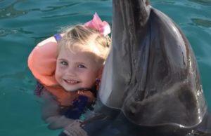 Дочка Пелагеи прокатилась на настоящем дельфине